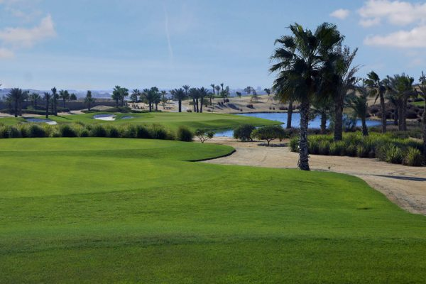 Palm Hills Golf Resort. Egypt